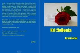 Published books | Solentro